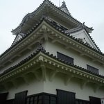 Tateyama Castle (City Museum Branch)