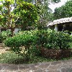 Parc de l'hotel