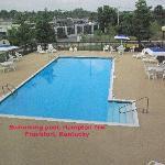 Swimming Pool Hampton Frankfort