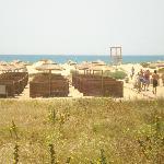 la seconda fila di ombrellodìni dietro la duna