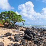 A Lava Rock Beach on Kauai's East Shore