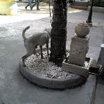 バンコクの犬は皆幸せそうです。