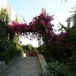 Hotel courtyard 2