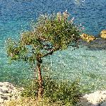 Crique mer proche hôtel