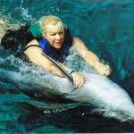 swimming with dolphins Mexico