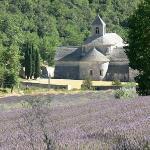 [Abbaye Notre-Dame de Sénanque]