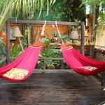 Hammocks to lounge in