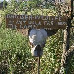 Wildcamp perimeter