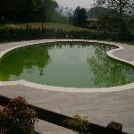 Swimming pool May 2008