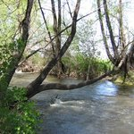Selah-Naches Valley