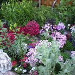 Flower garden in the back yard