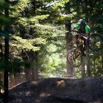 Whistler Mountain Bike Park Bild