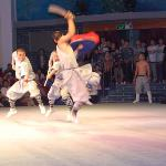 Dengfeng spettacolo arti marziali
