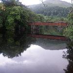 On the Loch Tay walk