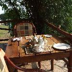 birds raid the table at the restaurant terrace
