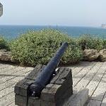 Jaffa, near St. Peter's