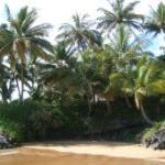 Maui, Hawaii - my favourite beach - good for boogie boarding
