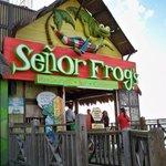 Foto de Señor Frog's