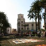 the carpets of flowers on the streets for Corpus Christi
