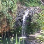 Anandale Falls