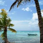 Great picture from our Saona Island excursion
