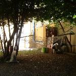 hamaca en el patio
