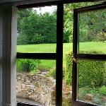 Window overlooking garden in room