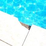 broken tiles around pool