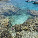 The Clear Blue Sea