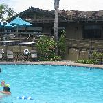 Island Palms Pool