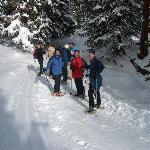 Schneeschuhwandern mit Herbert
