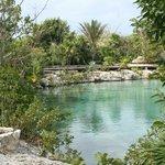 Lagoon in the garden