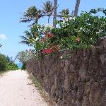 walkway to beach--further down road