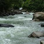 Rapids of the Mendi River