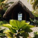 © thierry Duvivier Novotel Bora Bora