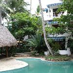 Photo of Caribe Surf Hotel