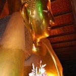 The laying Buddha