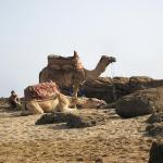 Agadir Beach Photo