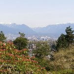View of Vancouver from the Queen Elizabeth Park