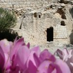 The Garden Tomb with flowers full of life