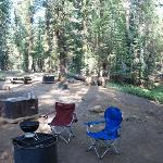 Our campsite, with a view of the firepit and the food locker.