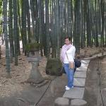 Hokokuji Temple (Bamboo Garden)