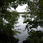 Lusty Beg Island nature trail