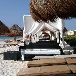 Cabanas on privilege beach