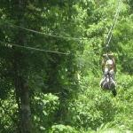 The zipline in Montego bay- a must!