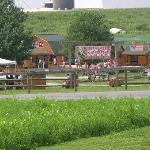 Cherry Crest Farm