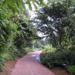 Huntsville Botanical Garden-bild