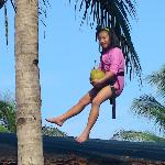 my prize for conquering the coconut tree