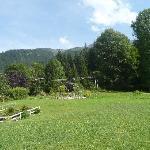 the back garden....