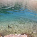 I love the crystal clarity of alpine lakes. Look closely and you might see some baby fish.